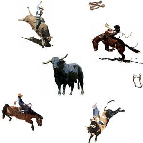 Bulls & Broncs 2