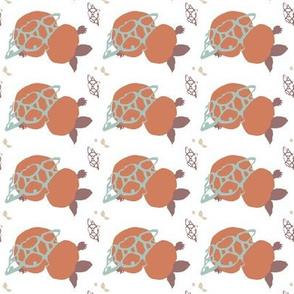 turtle_f1-ch