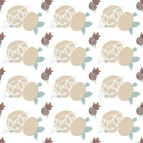 turtle_f3-ch