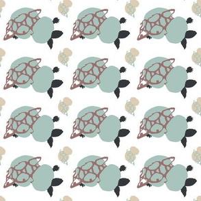 turtle_f4-ch-ch