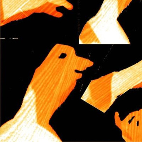 """Shadow Puppets on Wood (3) [51""""x66""""]"""