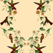 Hummingbirds_pattern_2_shop_thumb