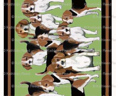 beagles_for_wallpaper border