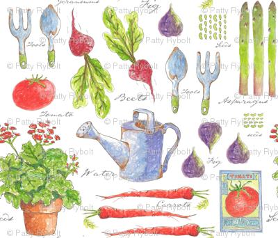 My Garden Sketchbook