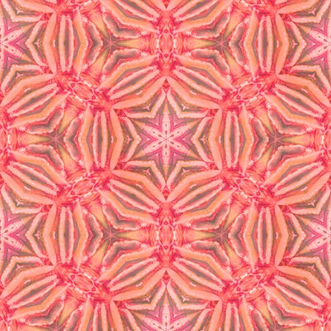 Rrpinkcolor_coral_kaliedescope_workingrepeat_shop_preview