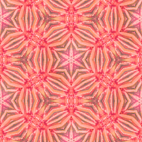 red coral kaleidoscope  fabric by alainasdesigns on Spoonflower - custom fabric