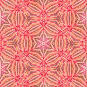 red coral kaleidoscope
