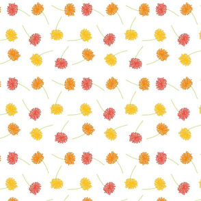 Scattered dandelions reds