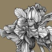 Hibiscusline_pillowfabric_granite_shop_thumb