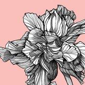 Hibiscusline_pillowfabric_blossom_shop_thumb