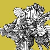 Hibiscusline_pillowfabric_chartreuse_shop_thumb