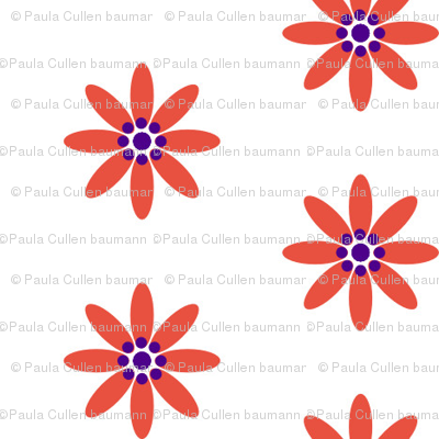 Red daisys