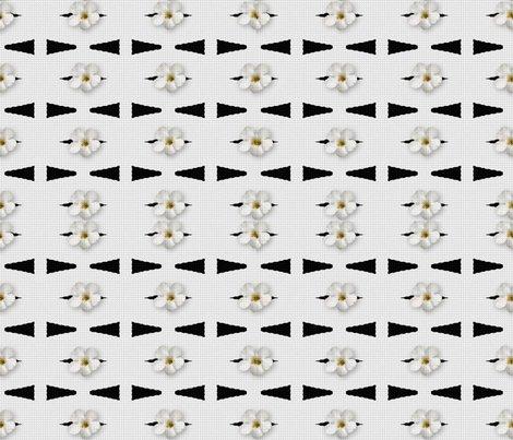 Rrma-_4-black-white-arrows-flowers_shop_preview
