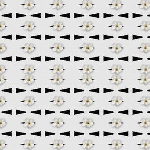 MA-4-Black-White-Arrows-Flowers