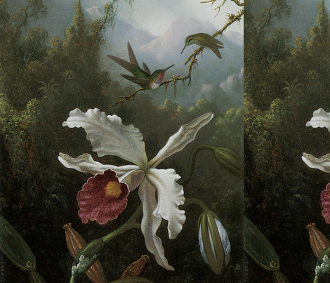 Two_Hummingbirds_Above_a_White_Orchid fabric by craftyscientists on Spoonflower - custom fabric