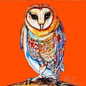 Barn Owl on Red