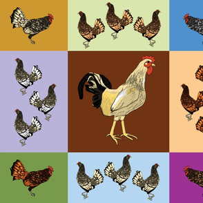 roosters_uneven_9_patch_D