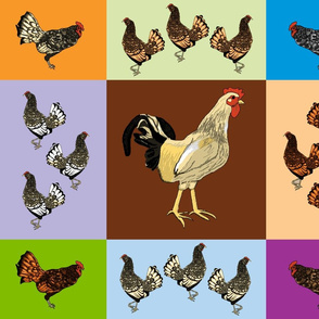 roosters_uneven_9_patch_E