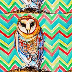 Southwestern Barn Owl Chevron Large