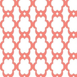 daisy chain in coral