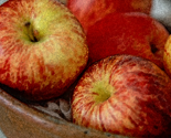 Summer_apples_thumb