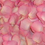 Rrrose_s_petals_shop_thumb