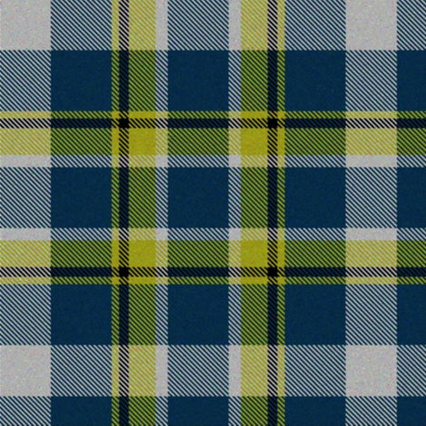 Firefly Plaid 7eclectic fabric by eclectic_house on Spoonflower - custom fabric