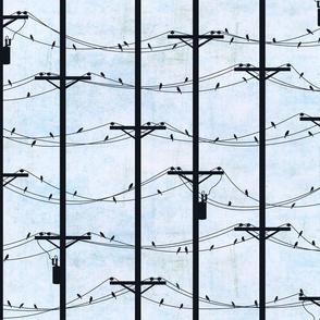 Wired Birds / Day