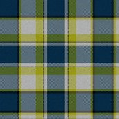 Rfirefly_plaid5_shop_thumb