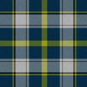 Rfirefly_plaid_4_shop_thumb