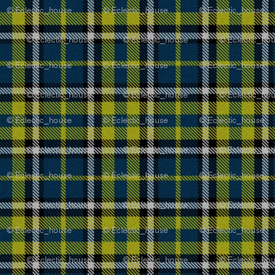 Firefly Plaid 1eclectic