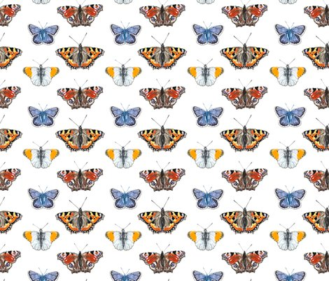 Rbutterfly_pattern_1_shop_preview