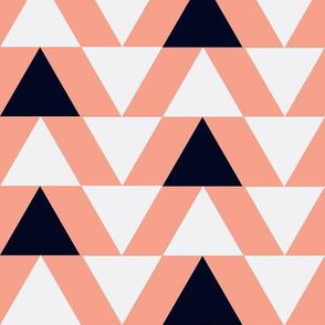 black and white triangles on coral