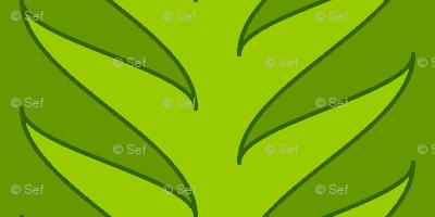 01988892 : sine vine : jungle