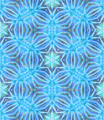 Blue Coral Kaleidoscope