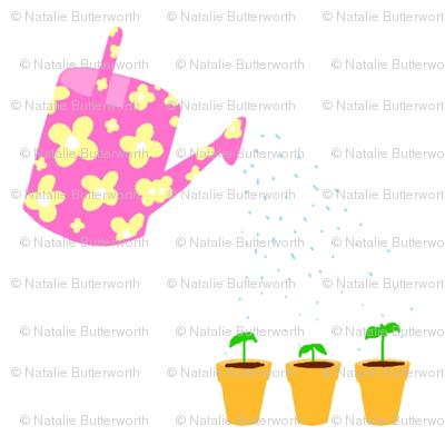 watering_seedlings