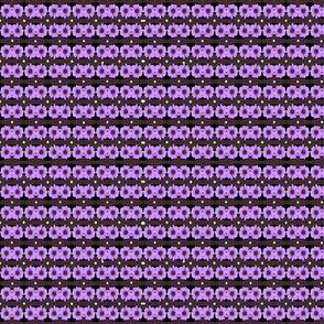MA-17-Black-Purple-Daisies