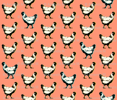 pop art chickens : coral