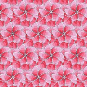 Petunia pink flower 01