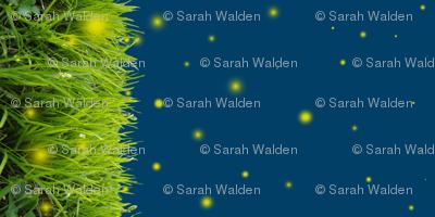 Fireflies In the Grass Border Print