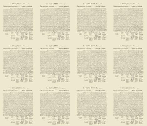 "10.5""x12"" (12/yard) declaration of independence fabric by weavingmajor on Spoonflower - custom fabric"