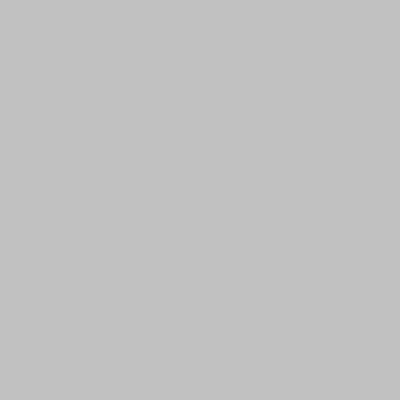 Solid light neutral grey c2c2c2 wallpaper weavingmajor - Solid light gray wallpaper ...