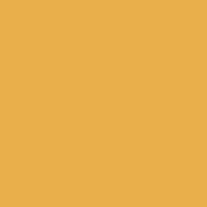 solid light apricot (E9AF4B)