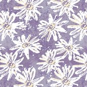 Washed_daisy_-_plum_shop_thumb