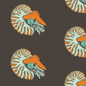 Blue and Orange Nautilus