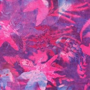 Sunprint_pink_purple