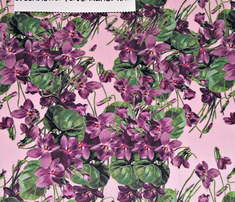 Violets_cutout_on_pink_divided__ai_300_dpi_14x12_upload_comment_339654_thumb