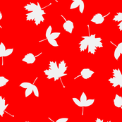 Red with white autumn leaves