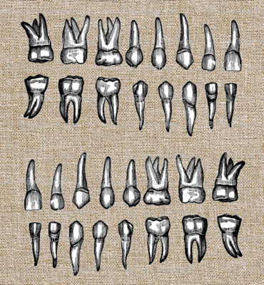 Human Teeth Fabric