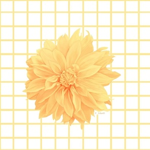dahlia_-_pale_yellow__10x10_with_yellow_check_design_04_for_spoonflower